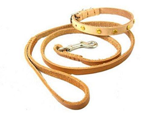 fsosoo-leine-leine-geschirr-hundehalsband-walking-training-flexi-erkunden-sie-langlebig-und-handgema
