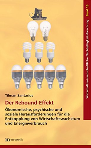 Der Rebound-Effekt: Ökonomische, psychische und soziale Herausforderungen für die Entkopplung von Wirtschaftswachstum und Energieverbrauch (Wirtschaftswissenschaftliche Nachhaltigkeitsforschung)