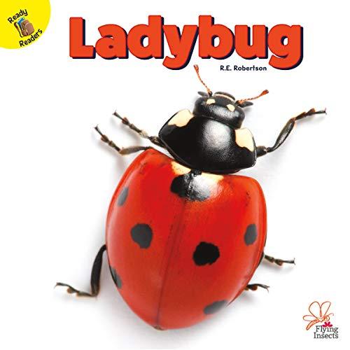 Flying Insects Ladybug, Grades PK - 1 (English Edition)