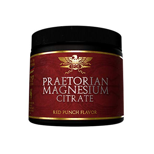 Limited Edition Gods Rage Praetorian Magnesium Citrate Museklaufbau Energie Fitness Bodybuilding 250g (Fruit Punch) - Punch Detox