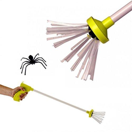 Spider Catcher - Spinnen und Insekten einfach fangen und bekämpfen