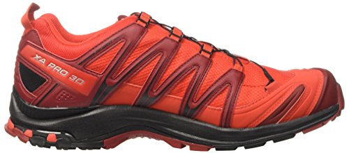 Salomon Xa Pro 3D Gtx, Chaussures de Trail Homme Multicolore (Fiery Red/bk/red Dalhia)