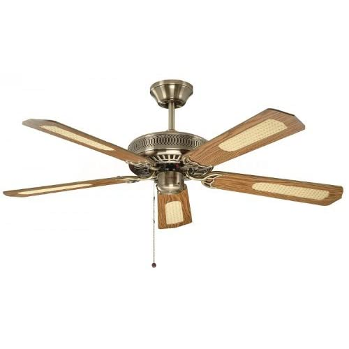 41rVljSGThL. SS500  - Fantasia Classic Ceiling Fan 52in Antique Brass