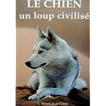 Le Chien : Un loup civilisé