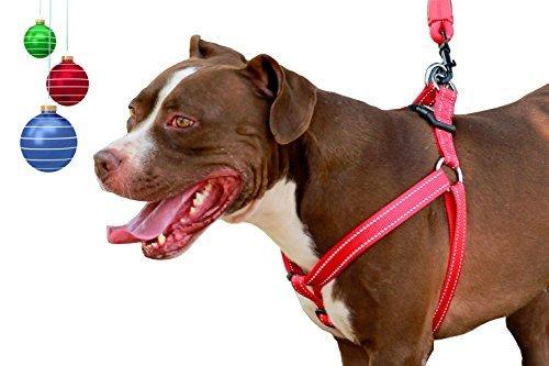 Best Schritt in keine Pull Hundegeschirr Weste mit Reflektierende Nähte für große & mittlere Rassen Brust Umfang (2,5cm X 66–99,1cm), passend für alle Hunde Leinen