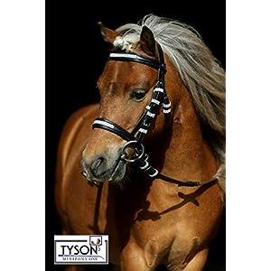 Tysons Breeches a Lot Glitzer Trense Reitzaum Minishetty Shetty Mini Pony Leder Schwarz + Zügel Minipony