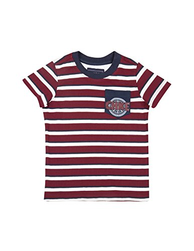 Cherokee by Unlimited Boys' Regular Fit T-Shirt (Pack of 2)(272233238 ASSORTED 05Y HS)