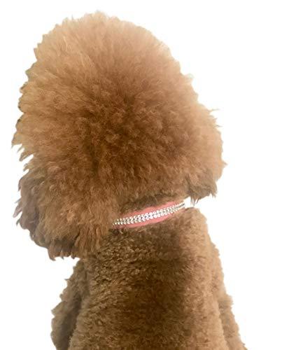 Der Hund Squad 6421411400012Reihen Glamour Girl Swarovski Trim Hundehalsband für Hunde, klein, pink -