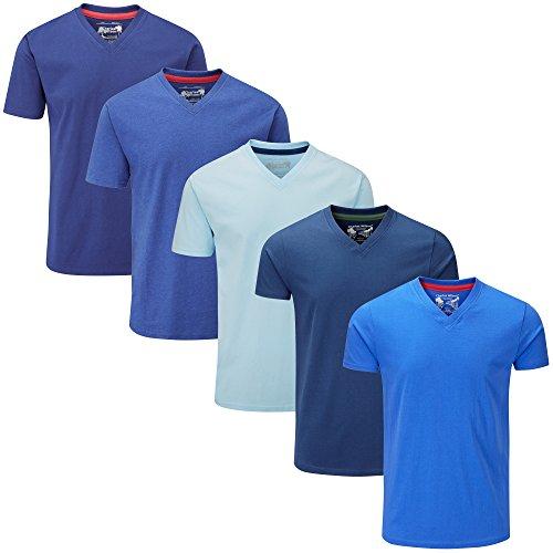 Charles Wilson 5er Packung Einfarbige T-Shirts mit V-Ausschnitt (XX-Large, Mixed Blue) (T-shirt Blue Xx-large)