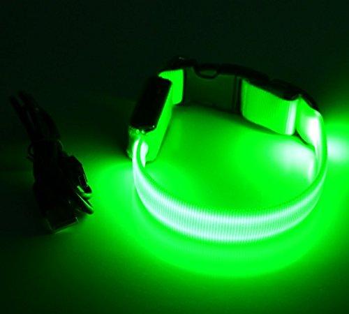 LED Leuchthalsband Basic 1 per USB aufladbar, Größe M, Grün