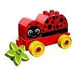 LEGO-Duplo-My-Firstla-Mia-Prima-Coccinella-Multicolore-10859
