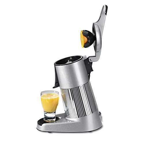 Petra Electric ZP 20.00 Profi Juicer