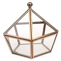 MagiDeal Geometrisches Glas Terrarium Box Glas Sukkulente Pflanzen Pflanzgefäß Deko Epochenstil - Anti-Gold