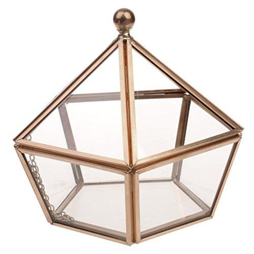 MagiDeal Caja Geométrica Terrario de Cristal de Estilo Clásico Cubo