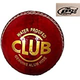 PSE Priya Sports PSESIMPLERED1 Leather Cricket Ball (Red)