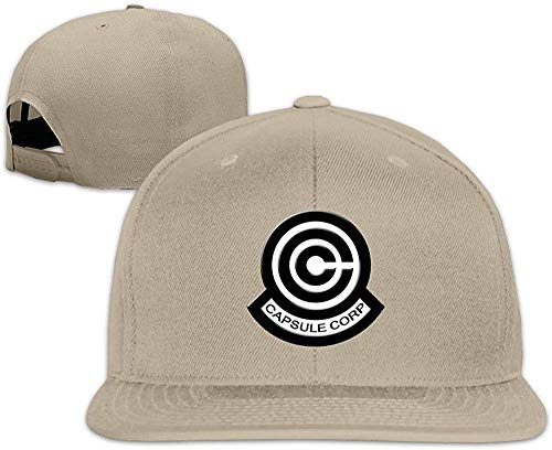 Huseki Dragon Ball Z Capsule Corp Logo Flat Along The Hat Natural