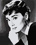 JIAER DIY Home Künstler Digitale Ölgemälde Durch Zahlen Abstrakte Wandkunst Bild Für Wohnkultur Audrey Hepburn Optionaler Rahmen 40x50cm