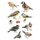 Schmucketikett Decor Aquarell Vögel 3Bl 1Pack
