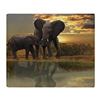 YISUMEI - Soft Fleece Blanket - Mother Elephant Child, 150 x 200 cm Throw Suitable for Sofa or Bed