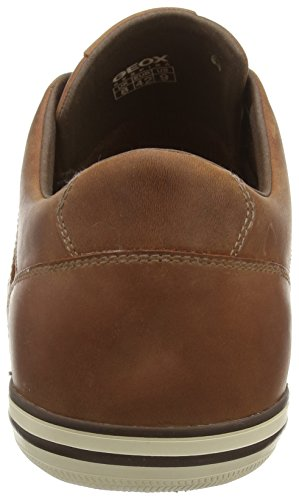 Geox U BOX D Herren Sneakers Braun (BROWNCOTTOC6003)
