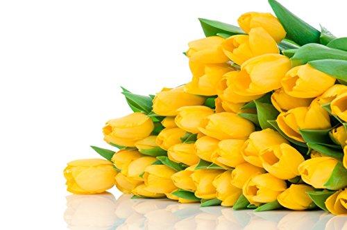Toutes sortes de bulbes de tulipes belles fleurs de jardin sont appropriés pour les plantes en pot (il n'est pas une graine de tulipe) bulbes 2PC 13