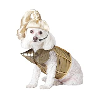 Pup-A-Razzi Pop Queen Dog Costume, Extra Small 7