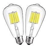 Hzsane ST64Glühlampe 10W Antik Edison Style LED Filament Glühbirne, Tageslicht Weiß 6000K, 1000lm, E27Sockel Lampe, Entspricht 100W Glühlampe, Nicht Dimmbar, 2-Pack