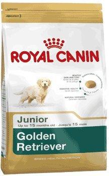 Royal Canin Golden Retriever Junior 3 kg, 1er Pack (1 x 3 kg)