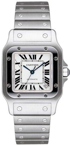 Reloj de los hombres de CARTIER SANTOS W20098D6 (reloj de pulsera) reloj de pulsera de la muñeca