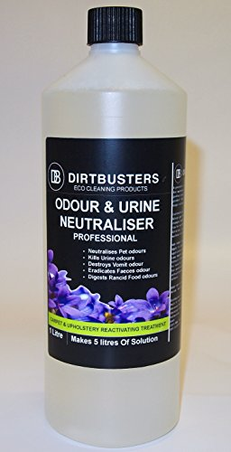 dirtbusters-professional-odeur-et-lurine-neutralisant-reactivating-enzyme-dsodorisant-solution-1litr
