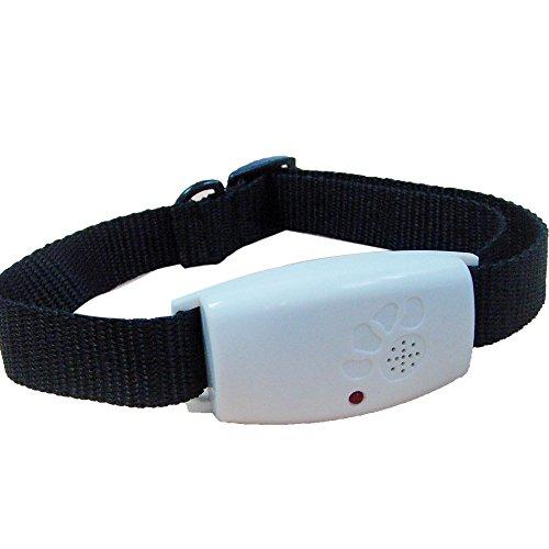 Easylifer Ultraschall Repeller Halsband Flohhalsband Ungezieferhalsband für Haustier Hunde Katze (Hund Repeller)