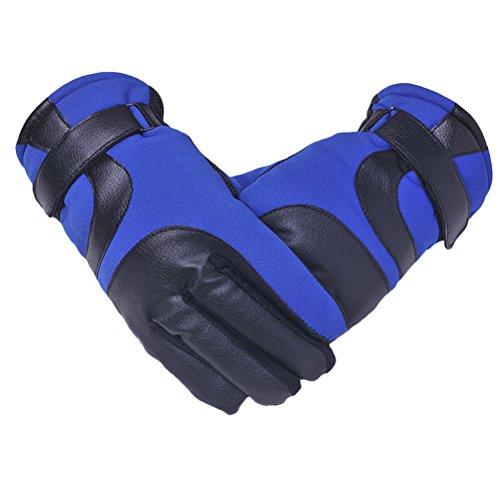 Zhhlinyuan Mens Womens Winter Thick Warm Gloves De plein air Sports Windproof Soft Gloves blue