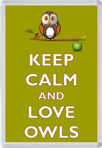 Keep Calm and Love Owls - Novelty Jumbo Fridge Magnet Gift/Souvenir/Present