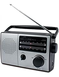 Caliber hpg317r Radio/Radiowecker