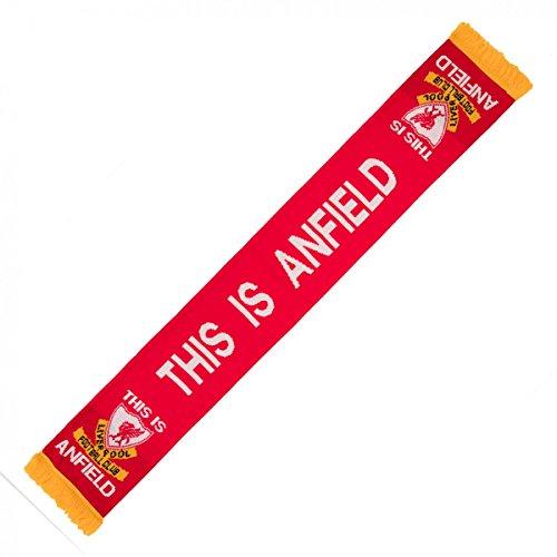 Liverpool FC–Exclusivo EPL importados esto es Anfield bufanda