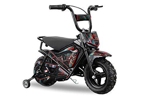 Elektrobike Eco Flee 250W 24V Dirtbike Crossbike Bike Eco (Blau)