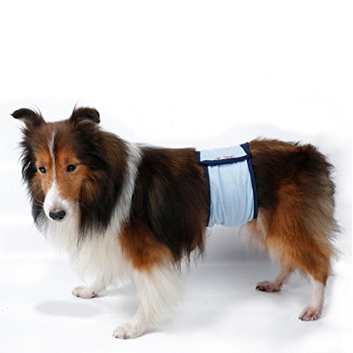 Ninasill Ausverkauf. Haustier Kleidung, ღ ღ Exklusive Waschbar Windeln Sanitär Stecker Dog Displayschutzfolie Hose Groß Stecker Dog Pants Casual Large Blau (Hund Sanitär-kleider)