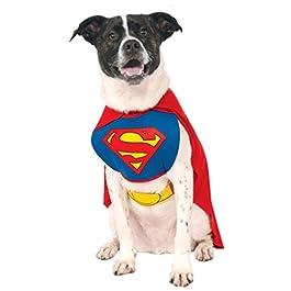 Superman del cane / Pet Costume