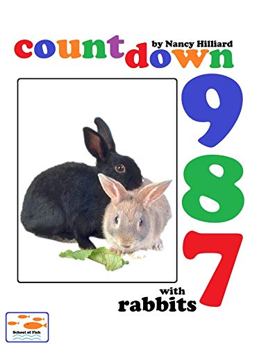 Countdown With Rabbits (321 Countdown Book 1) (English Edition)