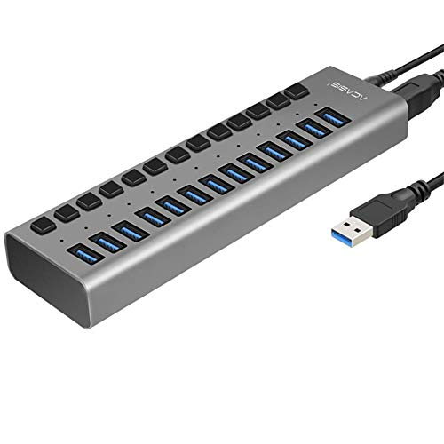 LPVIE USB-Hub, Multiport-USB-Hub 10 Port 13 Port 16 Port USB 3.0 Port Power Multi-Interface-Erweiterung Und Unabhängiger EIN/Aus-Schalter Und Anzeige,13port6Apowersupply (Hdmi-switch, 10-port)