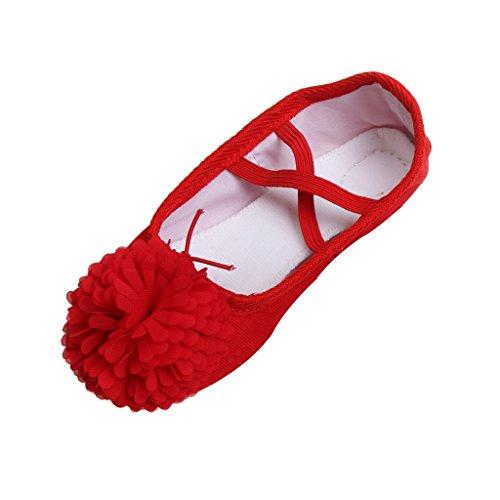Chaussons de Danse Fille Classique Toile Chaussures de Ballet Yoga Semelle Cuir Demi-Pointes Enfants - Rouge, 30