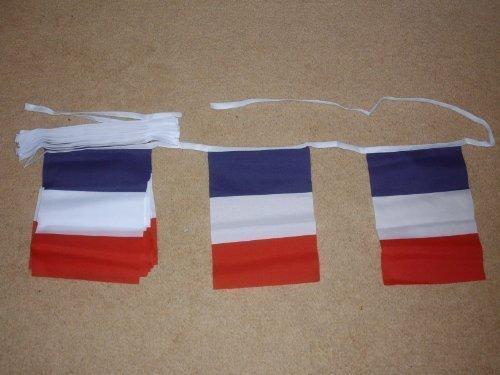 9 m de Polyester guirlande de drapeau de la France