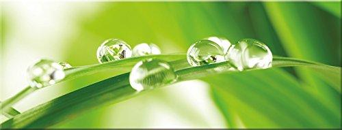 artissimo, Glasbild, 80x30cm, AG1925A, Leaf & Drops, grünes Blatt, Bild aus Glas, Moderne Wanddekoration aus Glas, Wandbild Wohnzimmer modern -