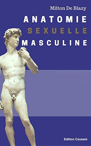 Anatomie sexuelle masculine par Milton De Blazy