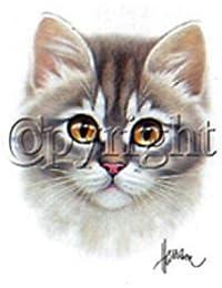 PATOUTATIS - t-shirt blanc femme motif tête de CHAT chaton - ref 8871