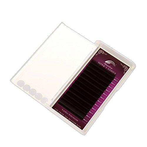 Cils Artificiels 3D Naturel Reutilisable Extensions de Cils Individuels Maquillage Noir - 8-10-12mm