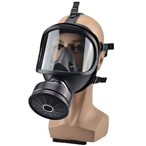 L&Z Gasmaske Vollgesichtsschutz Pestizid Formaldehyd Toxisches Gas Anti-Virus Aktivkohlefilter...