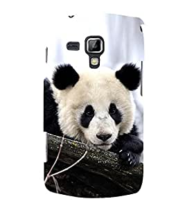 PrintVisa Cute Panda 3D Hard Polycarbonate Designer Back Case Cover for Samsung Galaxy S Duos 2 S7582 :: Samsung Galaxy Trend Plus S7580