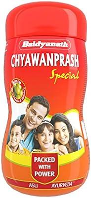 Baidyanath Chyawanprash Special - All Round Immunity and Protection - 250g