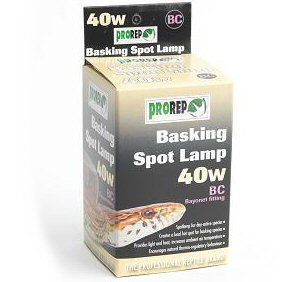 Pro Rep Basking Spot Lamp - 40WBC by Peregrine